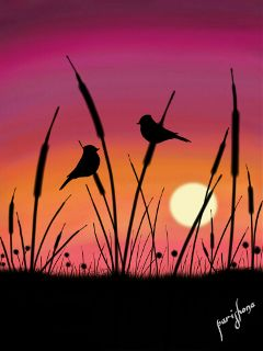 wdptwilight colorful cute nature love