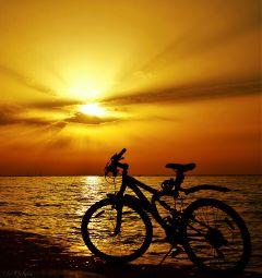 sunset sunsetlovers sunside sun sunsetcolors
