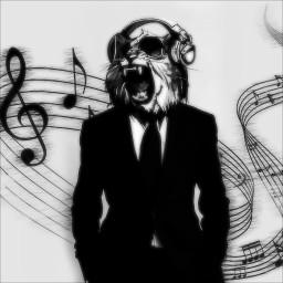 antiselfie antiselfi blackandwhite music cat