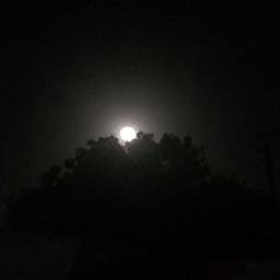 moonlight moon justnow