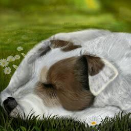 drawing digitaldrawing dog petsandanimals