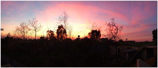panorama sunset redsky trees paphotochallenge