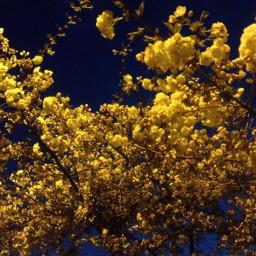 colorsplash emotions photography spring travel