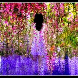hangingflowers springandfall