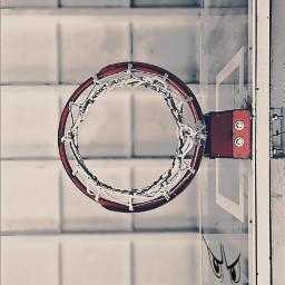 freetoedit basketball basketballneverstops art interesting
