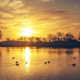 netherlands nature dodgereffect groenester sunrise