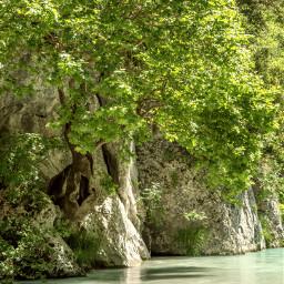 nature spring river acheron tree