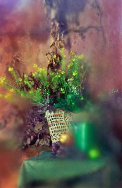 art photography summer