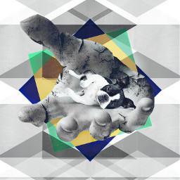 art abstract grunge animal pet