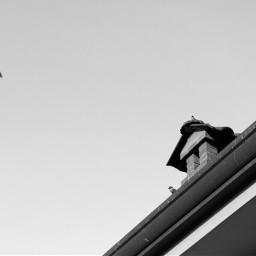 sky birds blackandwhite negativespace photography