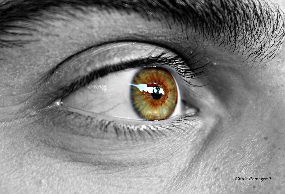 #myloveseye 👁 #macro #eyes #lookingthrough #colours #chromatic #deep @camillo2 @lussy77 @freetoedit #freetoedit