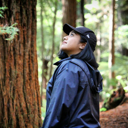 rotorua redwoods newzealand