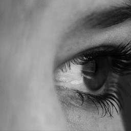 blackandwhite eye canon 1000d