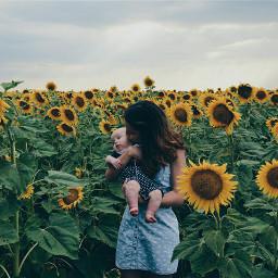 baby love summer flower