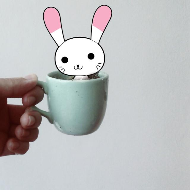 Hello ^_^ #bunny #bunnyears original image from @selmasevim   #FreeToEdit