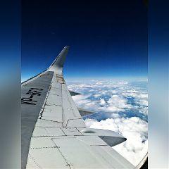 summer trip plane