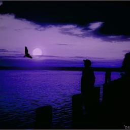 colorchangeup nettesdailyinspiration chesapeakebay sunset myoriginalmyedit wppnight
