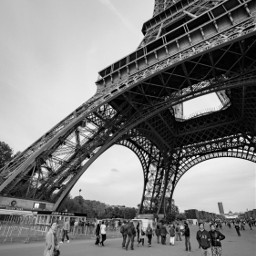 blackandwhite streetphotography people paris eiffeltower