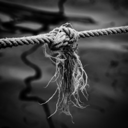 rope knot bound blackandwhite photography