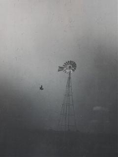 interesting fog blackandwhite beautifypicsart picoftheday