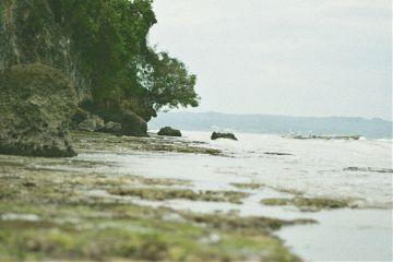 lifestyle travel photography jungle freetoedit