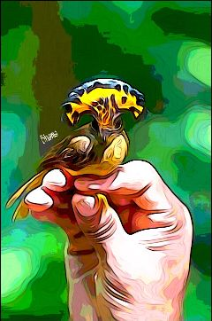 editstepbystep bird hand waterpaint effects